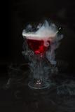 martini red Arkivbilder