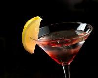 Martini rojo en el hielo Fotografía de archivo libre de regalías