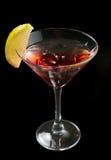 Martini rojo en el hielo Imagen de archivo