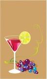 Martini Rosso Στοκ Εικόνες