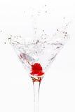 Martini splash Stock Images