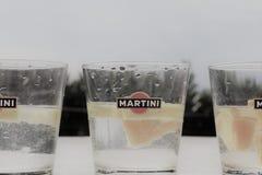 Martini szkło z cytryną i pomarańcze, obraz stock