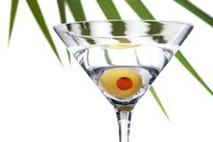Martini ulistnienia Zdjęcia Stock