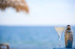Martini y coctelera Imagenes de archivo