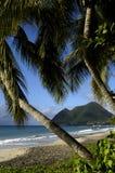 Martinica Fotografía de archivo