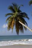 Martinique Stock Image