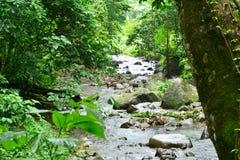 Martinique, picturesque Habitation Ceron in Le Precheur in West. Martinique, the picturesque Habitation Ceron in Le Precheur in West Indies royalty free stock photo
