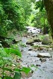 Martinique, picturesque Habitation Ceron in Le Precheur in West. Martinique, the picturesque Habitation Ceron in Le Precheur in West Indies stock photo