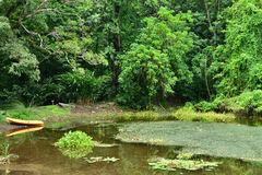 Martinique pittoresk boning Ceron i Le Precheur i västra royaltyfri fotografi