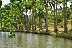 Martinique pittoresk boning som är mild i Le Francois in oss royaltyfria foton