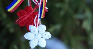 Martisor με τα ρουμανικά στοιχεία tricolor, τα κόκκινα τριαντάφυλλα και το διακοσμητικό υπόβαθρο διακοπών Μολδαβικές και ρουμανικ απόθεμα βίντεο
