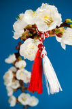 Martisor - праздник весны стоковое изображение