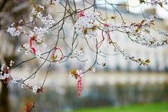 Martisor symbol av våren Royaltyfri Foto
