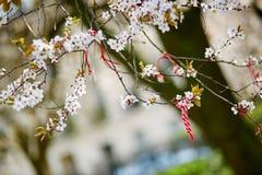 Martisor, Symbol des Frühlinges stockfotos