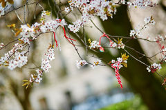 Martisor, symbol of spring Stock Photos