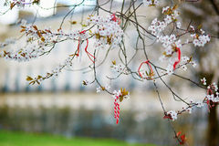 Martisor, symbol of spring Royalty Free Stock Photos