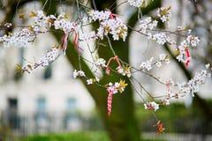 Martisors, symbols of beginning of spring Royalty Free Stock Photo