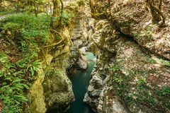 Martvili Canyon, Georgia. Landscape Abasha River. Natural Monument Royalty Free Stock Image