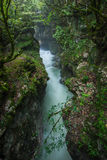 Martvili kanjon i Georgia Härligt naturligt med siktsnolla arkivfoto