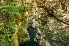 Martvili-Schlucht, Georgia Landschaft-Abasha-Fluss Ansicht von der Unterseite Lizenzfreies Stockbild