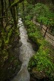 Martvili-Schlucht-Wasserstrom mit Fußweg lizenzfreies stockfoto