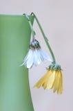 martwi kwiaty obraz royalty free