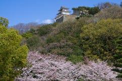 Marugame城堡在春天 免版税库存照片