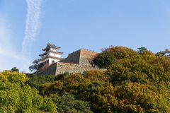 Marugame Castle in Japan. Outdoor beautiful scenery landscape Stock Images