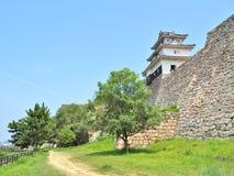 Marugame slott i Marugame, Kagawa Prefecture, Japan Royaltyfria Foton