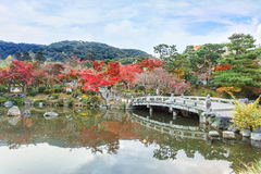 Maruyama Koen (Maruyama Park) in autumn, in Kyoto. Main center for cherry blossom viewing and can get extremely crowded at that time of year Stock Photography