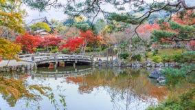 Maruyama Koen (parque de Maruyama) en otoño, en Kyoto Imágenes de archivo libres de regalías