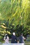 Maruyama Park, Kyoto Stock Images