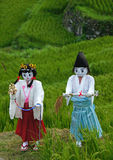 Maruyama Senmaida rice terraces in Japan. Puppets in the rice fields. Senmaida means one thousand rice paddies. They are located outside of Kiwa Town in the Royalty Free Stock Image