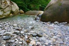 Marvellous halna mała rzeka wśród południowych lasów Obrazy Royalty Free
