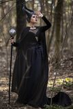 Marvellous and Magical Maleficent Woman with Horns Posing in Spring Empty Forest with Crook. Vertical Image Composition stock images