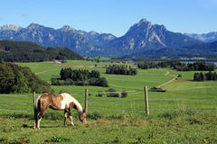 The marvellous mountain landscape of Bavaria Stock Images