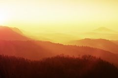 Marvelous daybreak above valley full of colorful mist. Peaks of high trees are sticking up to sky. Landscape in warm colors. Stock Photo