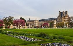 Marvelous spring Tuileries garden and view at the Louvre Palace in Paris France. April 2019.  stock photos