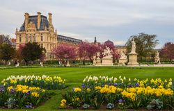 Marvelous spring Tuileries garden and view at the Louvre Palace in Paris France.  royalty free stock photography