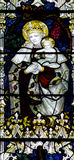 Mary with baby Jesus in her arms (stained glass) Stock Image