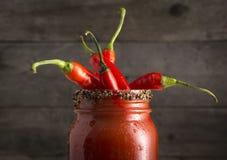 Mary Cocktail sanguinosa con i peperoni rossi del jalapeno Fotografia Stock