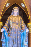 Mary den välsignade oskulden arkivfoton