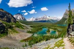 Mary Lake and Lake O`Hara Bird`s Eye View. Yoho National Park, British Columbia Royalty Free Stock Photography