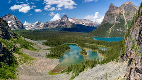 Mary Lake and Lake O`Hara Bird`s Eye View. Yoho National Park, British Columbia Stock Photography