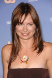 Mary Lynn Rajskub Royalty Free Stock Images