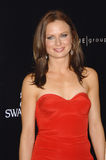 Mary Lynn Rajskub Stock Photography