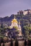 Mary Magdalene cathedral in Jerusalem, Israel. View on Mary Magdalene s cathedral of Russian Orthodox Gethsemane convent among trees on Mount of Olives slope royalty free stock photography
