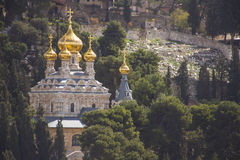Mary Magdalene s cathedral Jerusalem, Israel. View on Mary Magdalene s cathedral of Russian Orthodox Gethsemane convent among trees on Mount of Olives slope royalty free stock photography