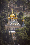 Mary Magdalene s cathedral Jerusalem, Israel. View on Mary Magdalene s cathedral of Russian Orthodox Gethsemane convent among trees on Mount of Olives slope stock image