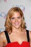 Mary McCormack Stock Images